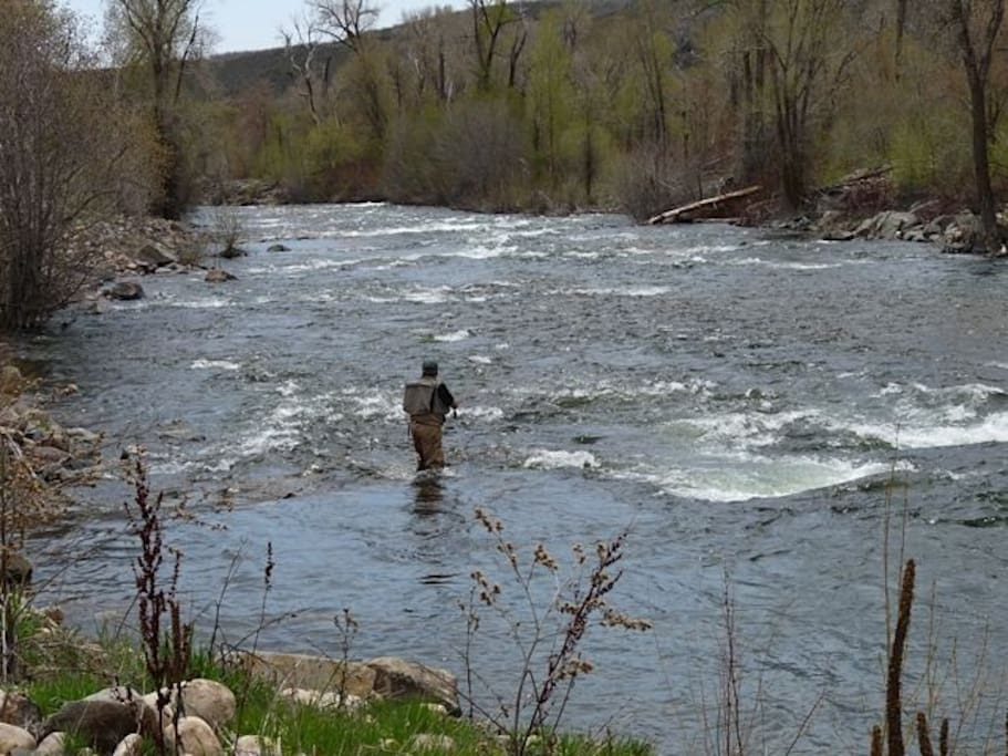 Fly Fishing on the Provo, a Blue Ribbon Stream - 10 minutes away!!!