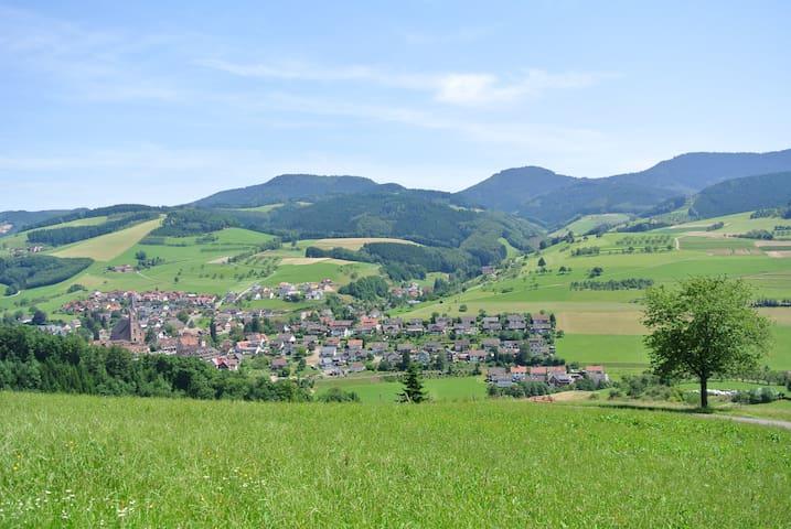 Ferienwohnung-Schäck 3 - Oberharmersbach - Apartment
