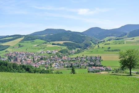 Ferienwohnung-Schäck 3 - Oberharmersbach - Apartamento