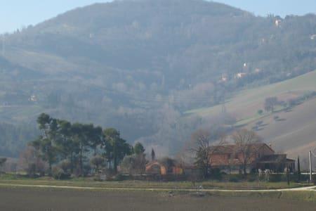 b&b nelle colline del pesarese - Mombaroccio - Aamiaismajoitus