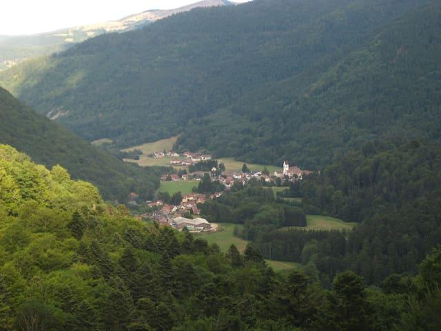 Gîte : vallée de la Wormsa/Alsace - Mittlach - House