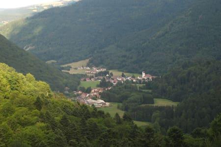 Gîte : vallée de la Wormsa/Alsace - Mittlach