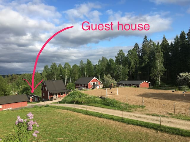 Neat guesthouse on small horse farm
