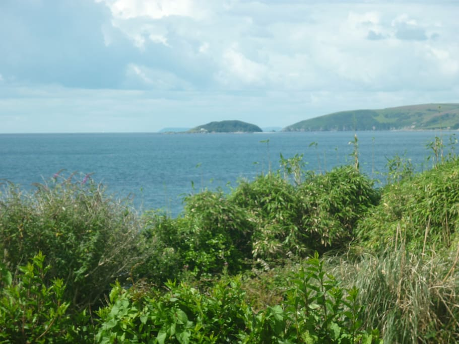 View of st Georges island, off Looe