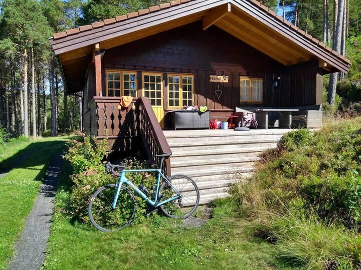 Cozy cabin close to the sea.