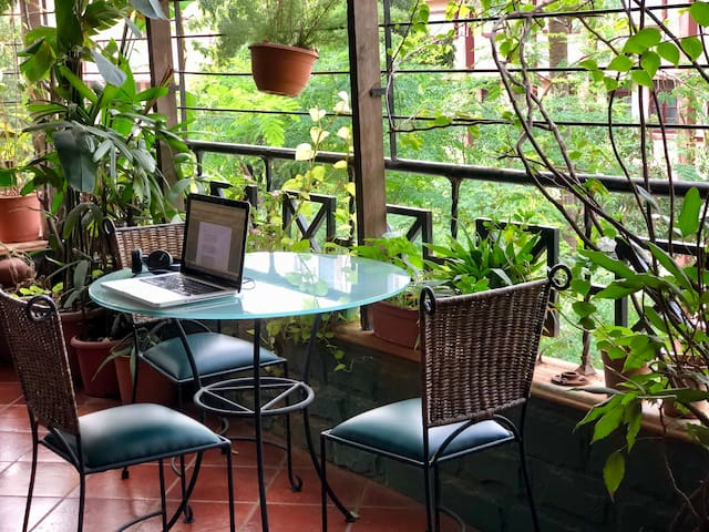 Work from the terrace surrounded by plants...