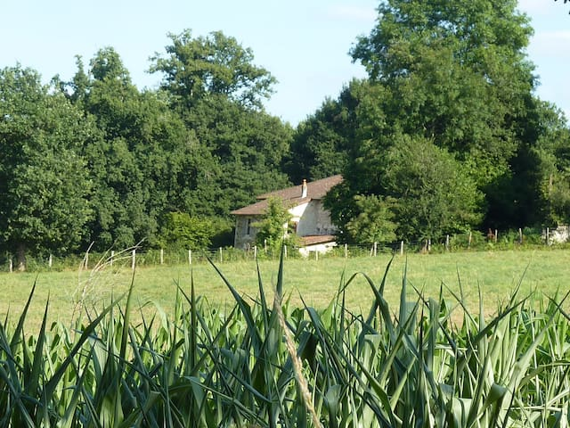 Charming farmhouse in a big garden - Laurière - Leilighet