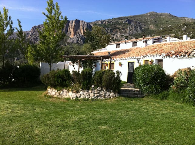 Andalusian house in the countryside - Alfarnatejo - Hus