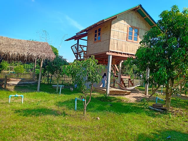 House on stilts in Organic farm