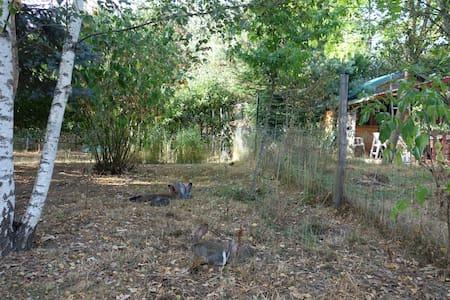 Cabane en bois - Mornay-sur-Allier - House - 1