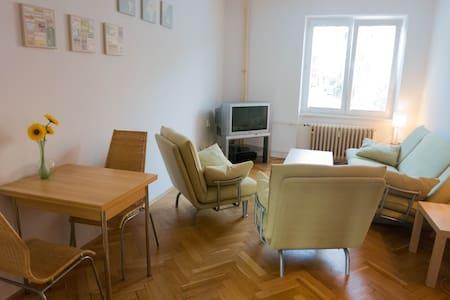 Modern, bright apartment Spojovací