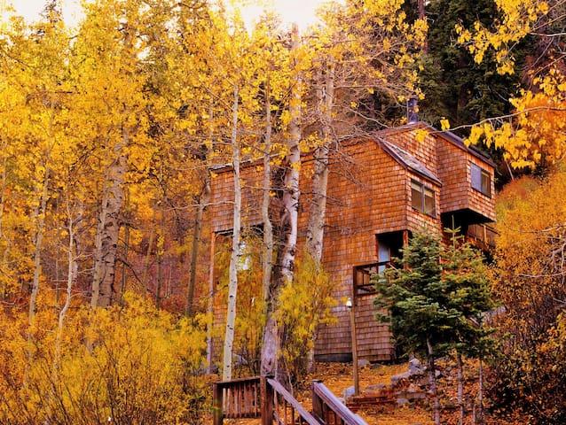Alpine Meadows Ski Cabin - Alpine Meadows - Casa