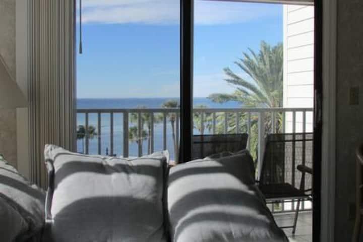 Actual 2BR/2BA condo on Tampa Bay sparkling waters
