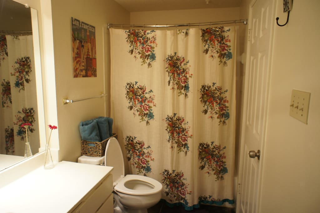 First bathroom, Access to the hallway and first bathroom