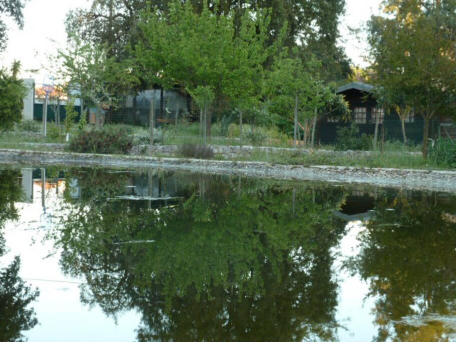 piscina área banhos