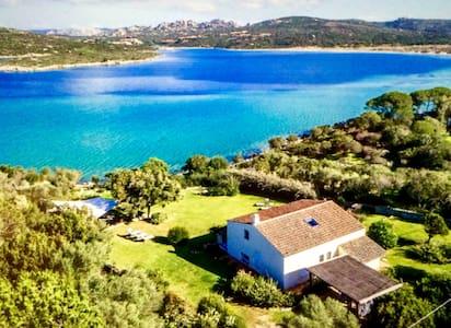 """Villa Giulia """"pied dans l'eau""""  sul mare - Porto Pollo - Hus"""