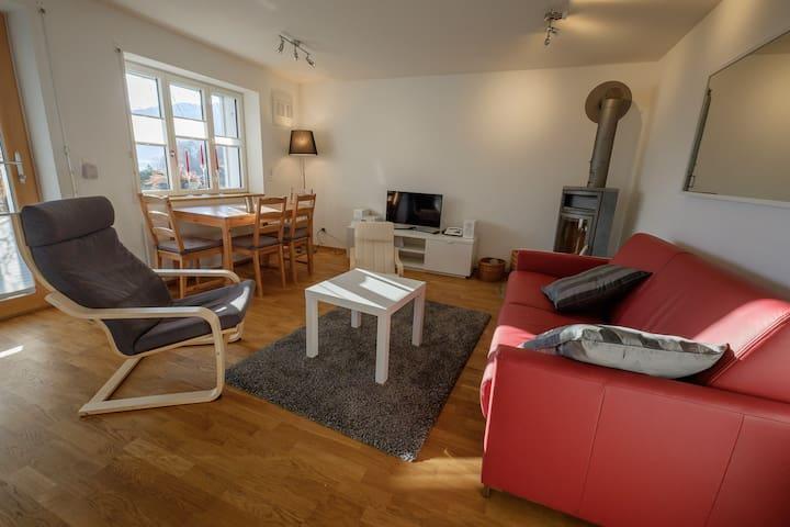 Wohnzimmer mit direktem Garten-Zugang, Bettsofa, Fernseher, Kaminofen sowie Küche und Esstisch.