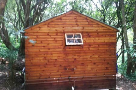 Unit 1 - one bedroom Forest Unit - Hilton - Appartement