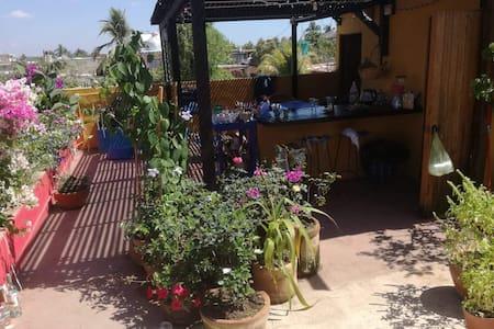 Departamento con terraza floreada y fuente