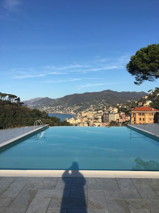 Swimmingpool in the garden with view on Camogli