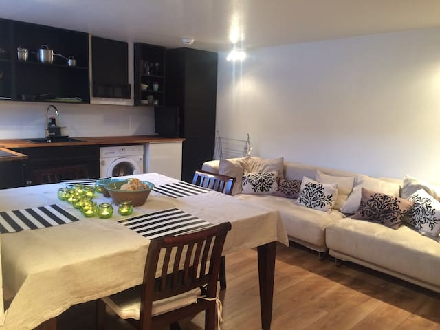 Newly made one bedroom flat for - Reykavik - Daire