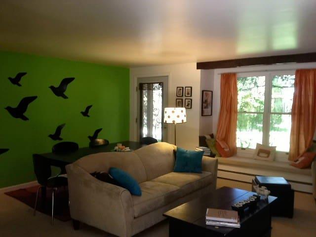 2 Bedroom Aspen Condo  - Aspen - Daire