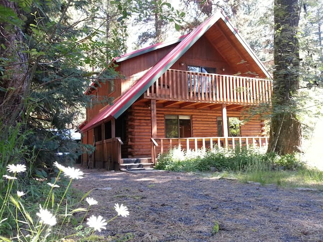 Spacious Lake Shore Ponderosa Cabin - McCall - House