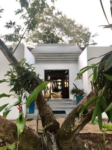 Casa Colibrí, Izabal