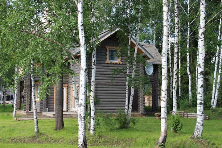 Дом на природе (Подмосковье,Истринский район) - Istrinsky District - Ev