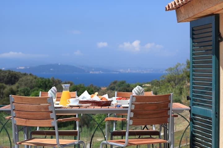 "Wine estate ""La Navicelle"" - Cottage Syrah"