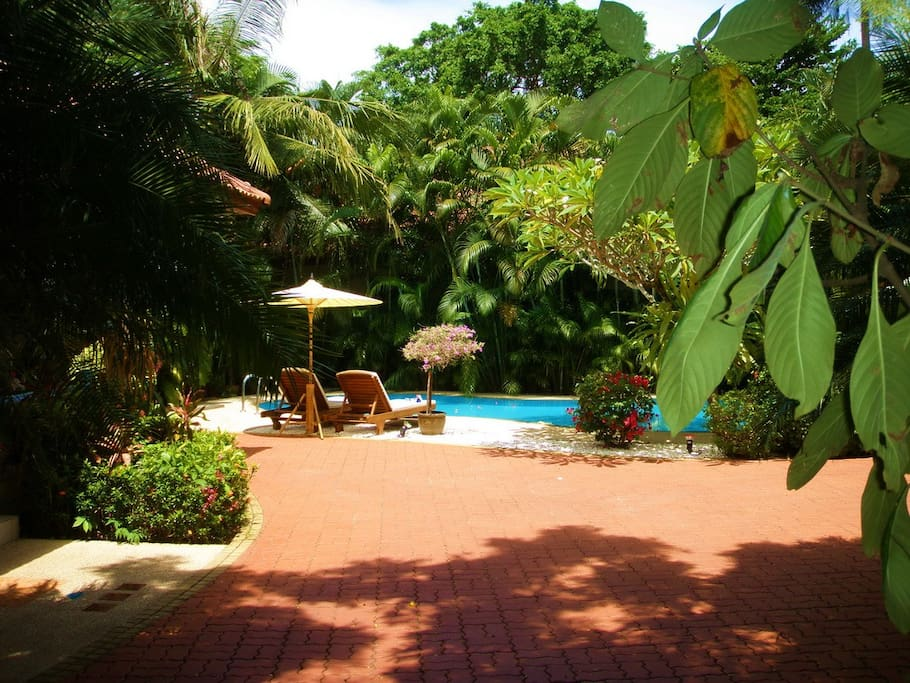 The Beautiful Pool set in Tropical Gardens