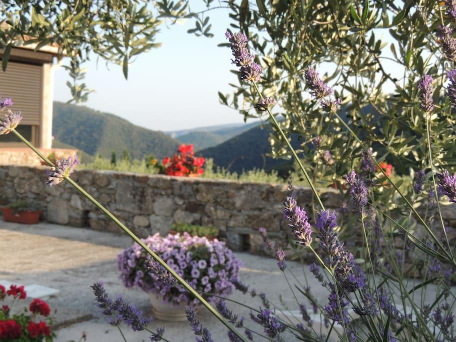 Vue sur la vallée on peut voir un bout de la véranda.