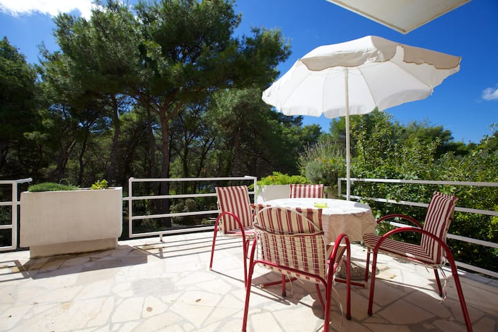 5 Apartments Delic, Island Hvar, Studio 3