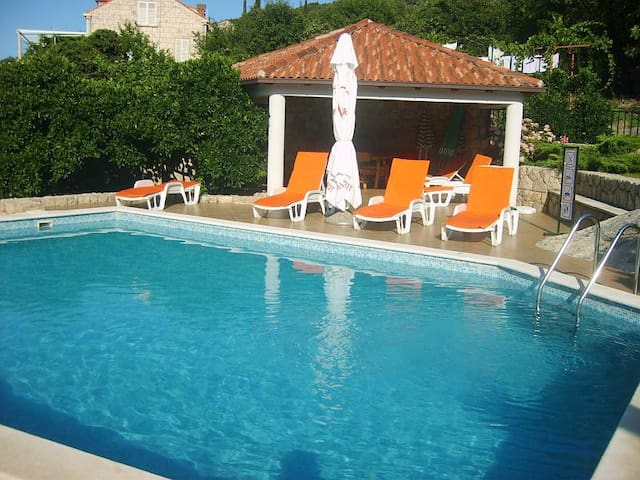 On shore of virgin bay with Pool A2 - Molunat - Apartmen