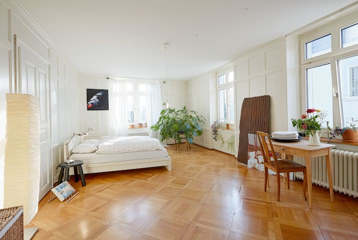 Big cozy,bright lovely room near the lake and city - Zürich - Appartement