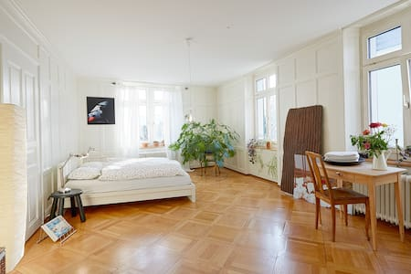 Big cozy,bright lovely room near the lake and city - Zürich - Apartment