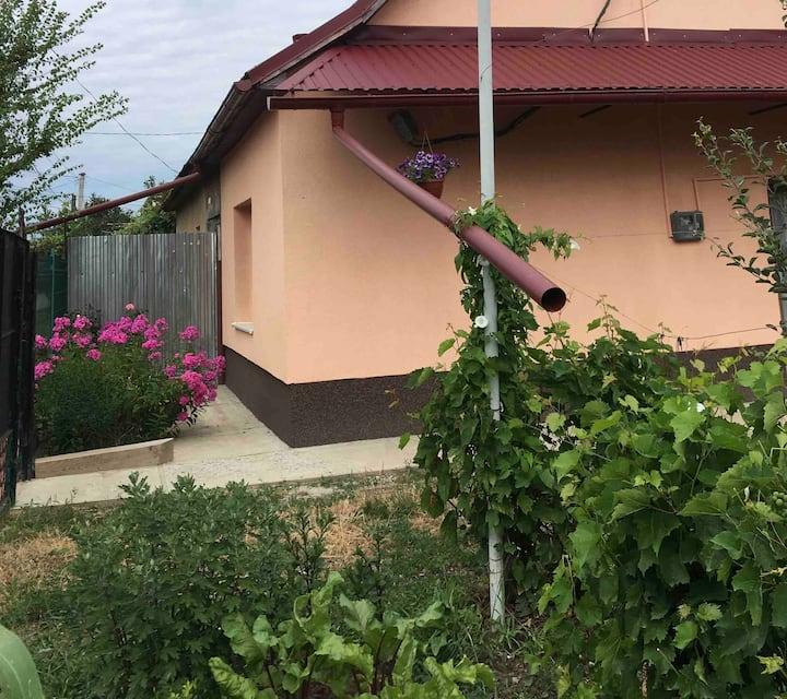 Уютный особняк/паркoвка-Nice house/private parking