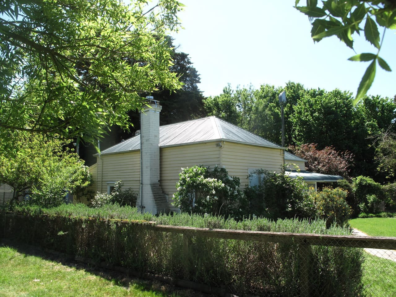 Tolka cottage in the Spring sheltered by tall trees and surrounded by a garden, perfect for birdlife. Eggs and vegetables are available from the farm.