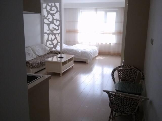 大连开发区红梅北欧假日豪华酒店公寓 - Dalian - Wohnung