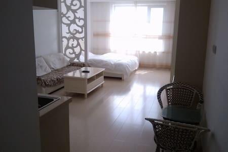 大连开发区红梅北欧假日豪华酒店公寓 - Dalian - Apartment