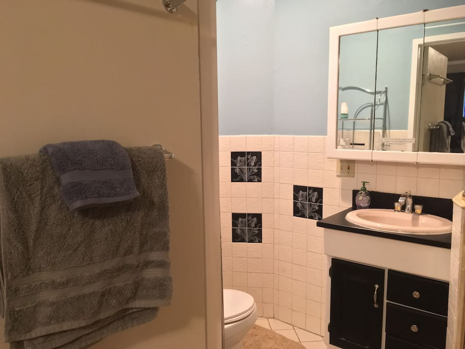 Private master bedroom bathroom with walk-in shower, soap, toiletries, and a hairdryer