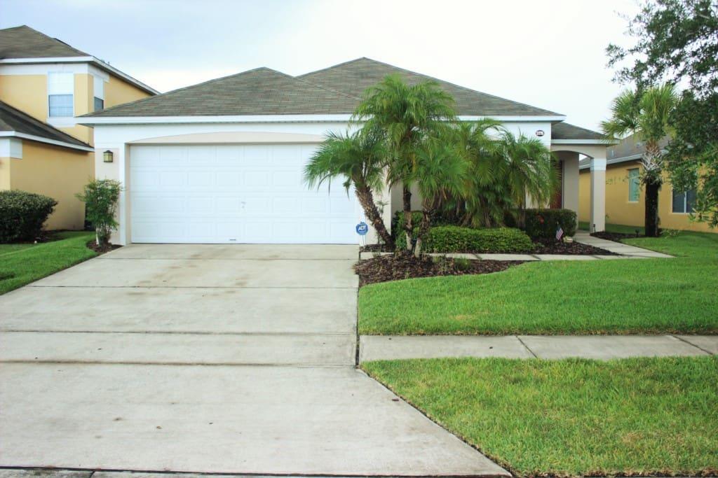 Yard, Fir, Tree, Building, Palm Tree