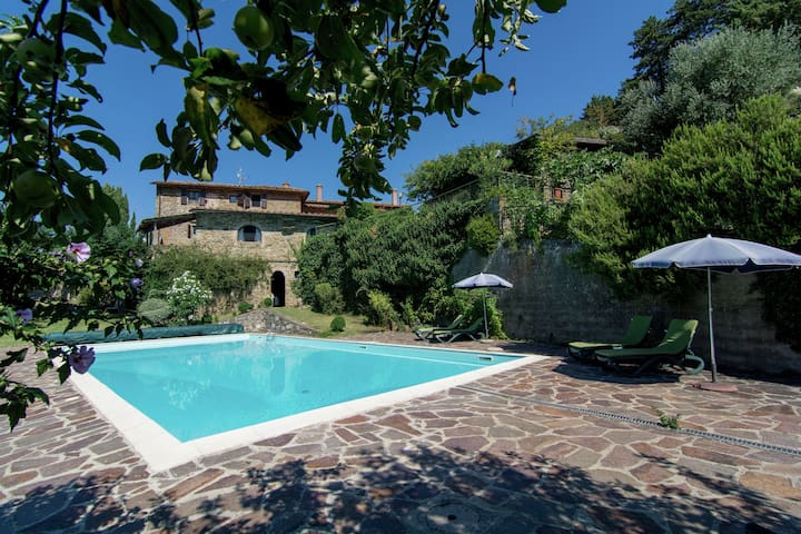 Cosy apartment in the well known Chianti area, with swimming pool and terrace.