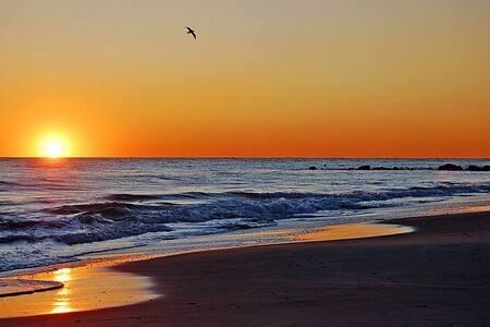 Beautiful Beach Getaway! - Long Beach - Lakás