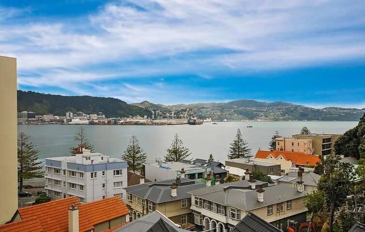 Oriental Bay Great Location & Accom - Wellington - Villa