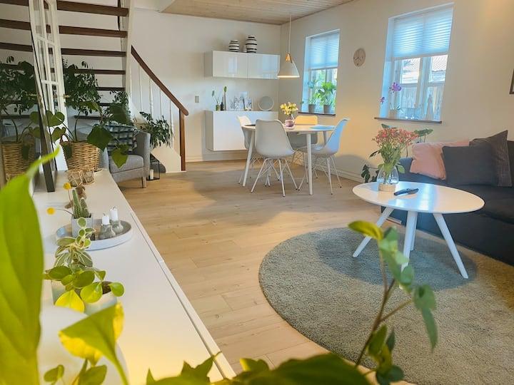 Lille hyggeligt byhus, i centrum af Langå.