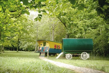Gypsy trailers in the forest - Donzy