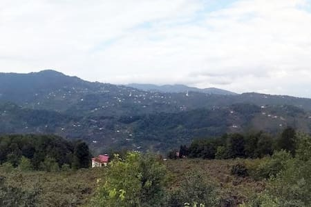عطلة آمنة ومريحة ونظيفة وصحية في بيئة القرية