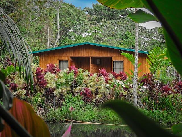 Autentica - Habitacion Tucan