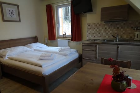 Room for 2 in the mountains - Carlsbad - Czech Rep - Merklín - Daire